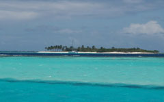 Petit Tabacin the Tobago Cays