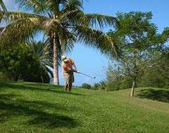Golf in St. Maarten