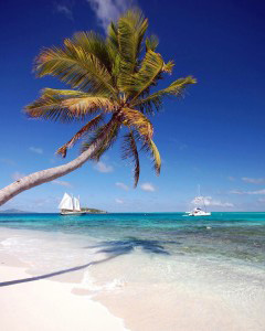The famous Tobago Cays